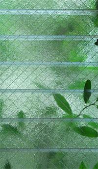 Jungle0706_00