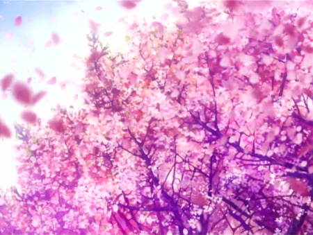 Clannad_sakura