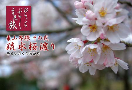 sakurawatari_cocolog