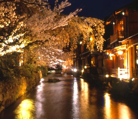 Sakurawatari_cocolog3