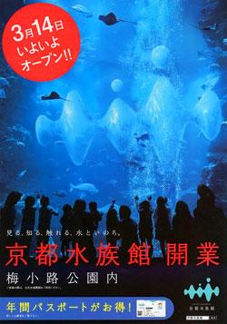 Kyoto_aquarium00