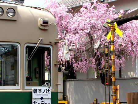 Omuro_7939_450